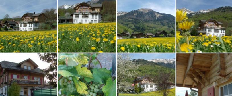 Impressionen Hotel Alpenrose in Hofstetten bei Brienz